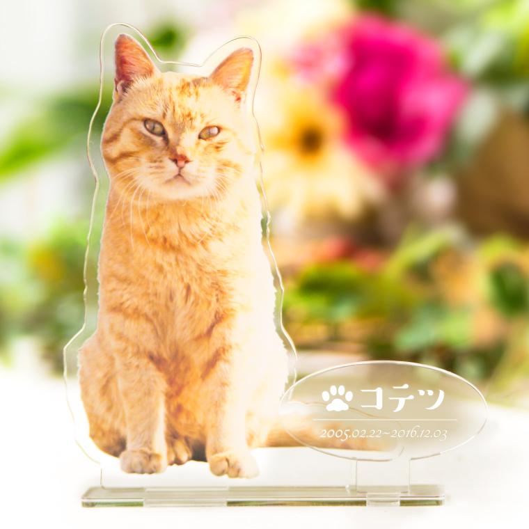【新商品】ペットメモリアルスタンド新発売