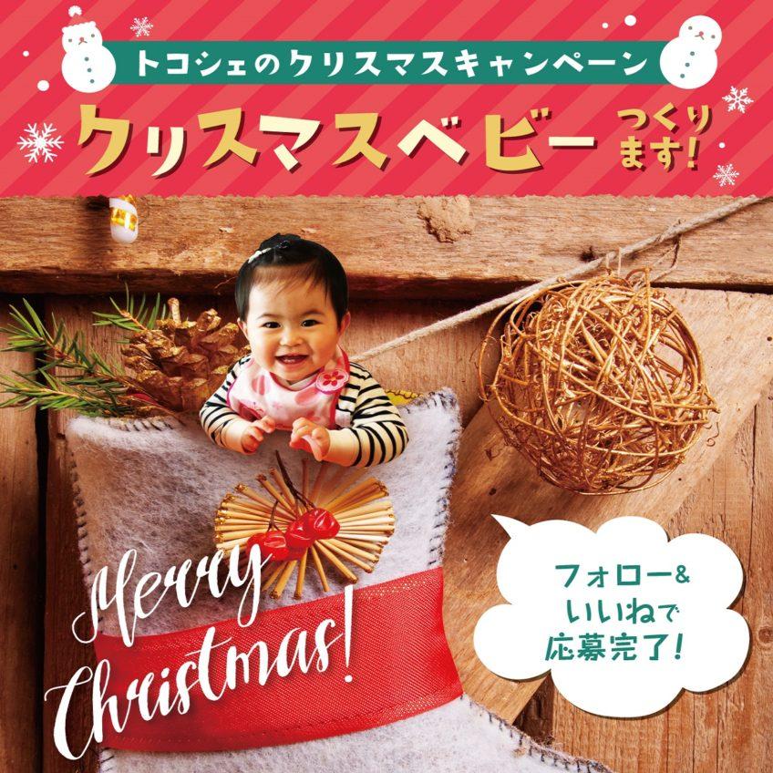【インスタグラムキャンペーン】「クリスマスベビー」つくります!